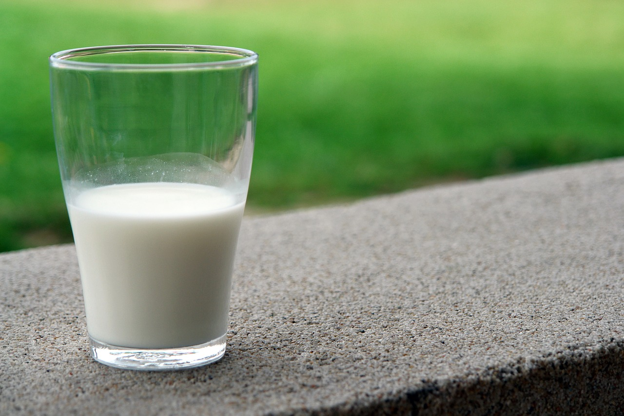 Learn the Health Benefits of Raw Milk